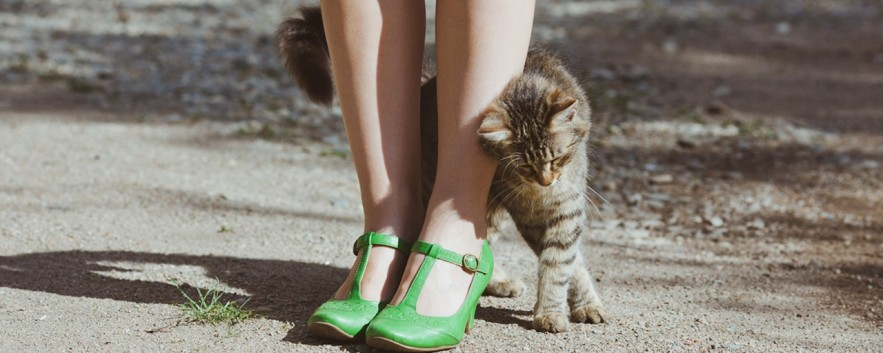 Kittenhood 時尚部落客 演繹復古俏皮氛圍