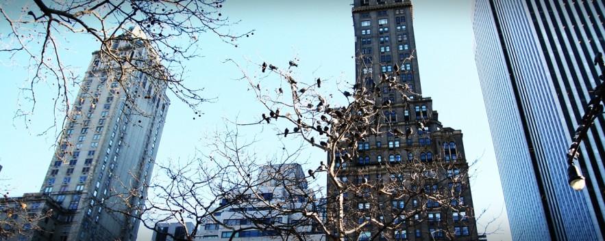 |旅行風景|從前從前,在紐約… Once Upon a Time in New York…
