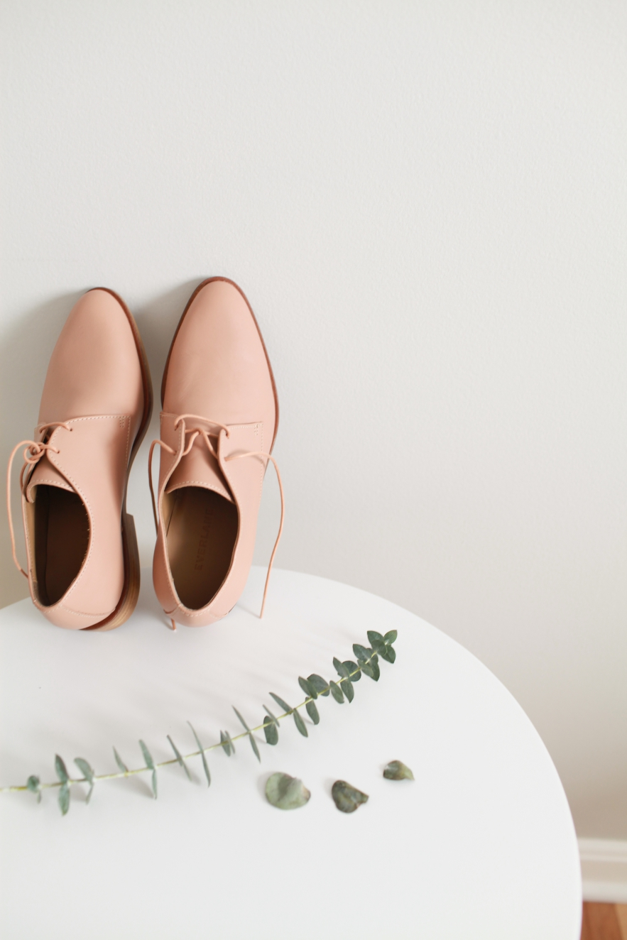 everlane modern oxfords
