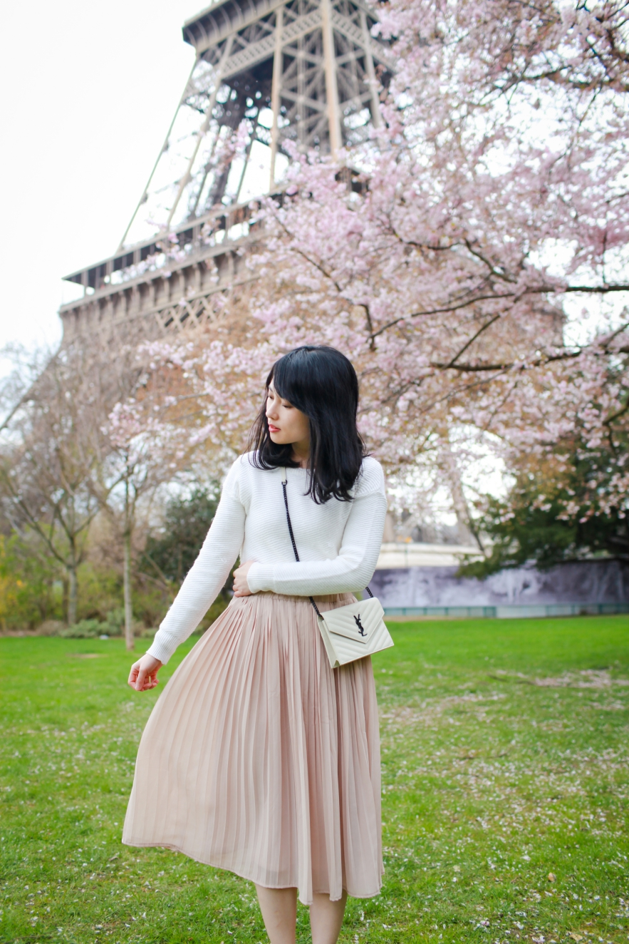 cherry blossom paris