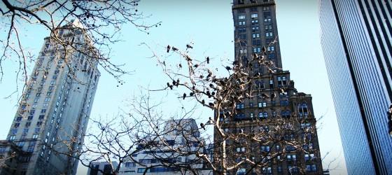 |旅行風景|從前從前,在紐約... Once Upon a Time in New York...